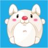 Rolling Rabbit